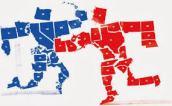 political-divide